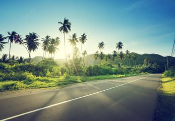 empty road in jungle of Seychelles islands Wall mural