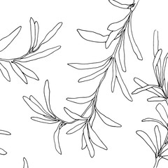 Vector floral ornament and illustration