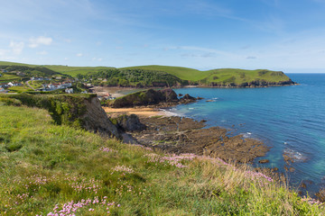 Fototapete - Uk south coast Hope Cove Devon near Salcombe in summer