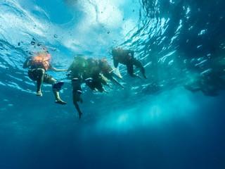 Under Water Image