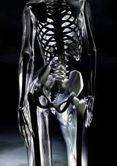 Gläserner weiblicher Körper - Glassy female body