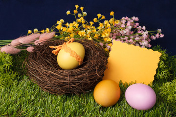 Easter eggs in the nest on the grass