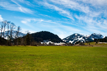fantastic meadow and mountain in spring - germany