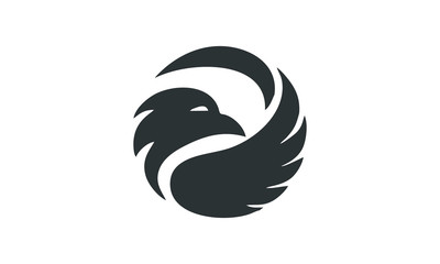 great black bird