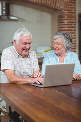 Cheerful retired couple typing on laptop