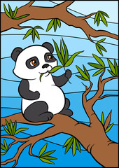 Little cute panda sits on the tree and eats leaves.