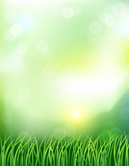 Spring background with rising sun. Vector illustration.