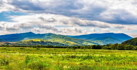 meadow near the village on hillside