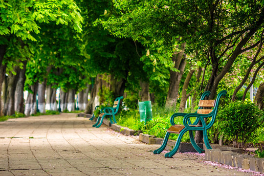 old city park with benches