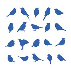 Vector set of bird silhouettes.