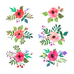 Vector flowers set. Colorful floral collection with leaves and flowers drawn watercolor for your design.