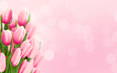 Bouquet of tulips on pink background with space for message.