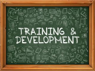 Training and Development - Hand Drawn on Chalkboard. Training and Development with Doodle Icons Around.