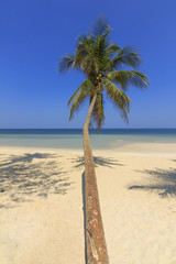 Tropical Beach , Thungwualaen Beach at Chumphon , Thailand