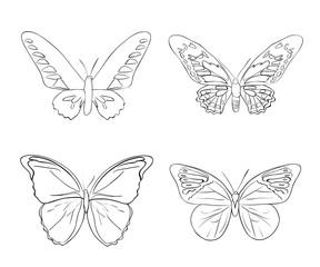 Set of sketches doodle butterflies