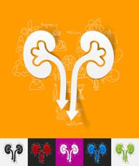 kidneys paper sticker with hand drawn elements