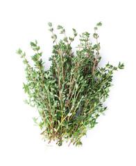 Fresh garden thyme herb