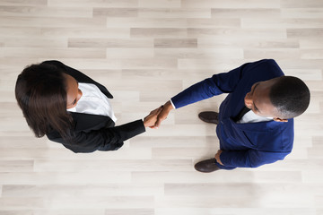 Business Man And Woman Handshaking