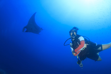 Young woman scuba dives with manta ray