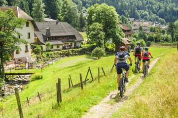 Fototapete - mit dem MTB unterwegs im idyllischen Schwarzwald