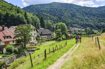 Fototapete - Radtour im Schwarzwald