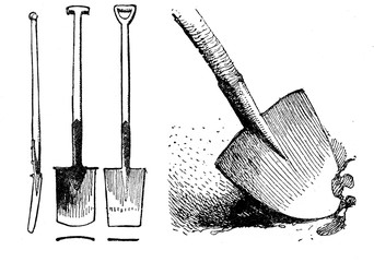 Horticulture vintage illustration, different shapes of spades