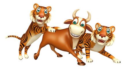 Tiger hunting Bull