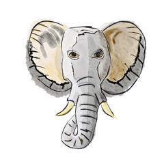 Elephant 's head in watercolor