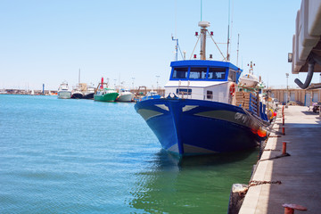 Fishing boats moored in the harbor