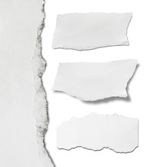 Ripped paper, Pieces of torn paper on plain background. Copy space