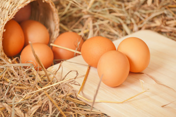 Fresh eggs from the farm in the hay