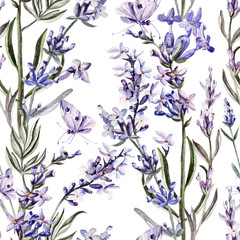 Watercolor pattern with lavender flowers