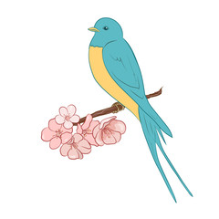 Beautiful and cute color swallow sit on a flowering branch. Stylish design element isolated on a white background.