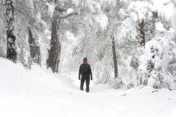 Man in the snowy forest