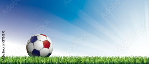 ballon de foot tricolore pos sur pelouse fichier vectoriel libre de droits sur la banque d. Black Bedroom Furniture Sets. Home Design Ideas