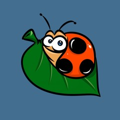 Ladybug insect cartoon illustration  animal character