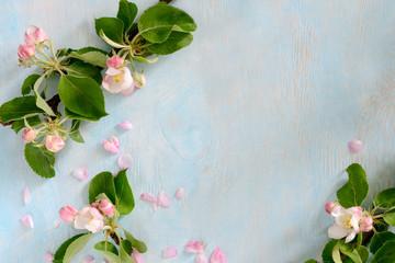 Spring bloom background