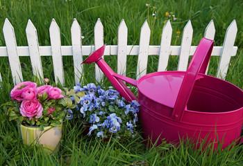 Bilder Und Videos Suchen Weisser Gartenzaun