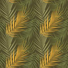 Plant Kentia. Vector illustration