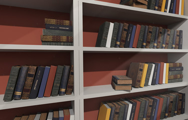 White shelves filled with books