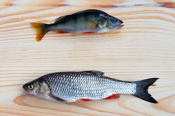 perch and chub on a wooden surface
