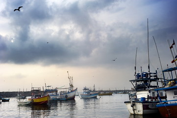 Harbour in Sri Lanka