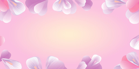 Flowers frame. Pink petals isolated on pink. Vector