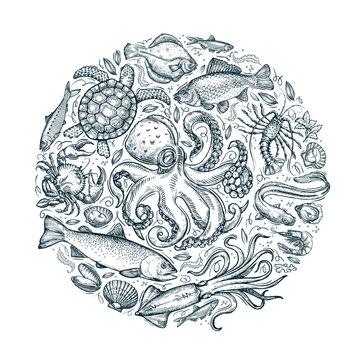 marine animals, seafood. hand drawn sketches. vector illustration