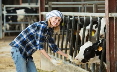 Portrait of smiling veterinary technician feeding cows