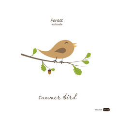Summer bird in cartoon style on white background. Forest animals