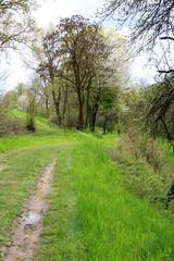 idyllische Landschaft zum Wandern
