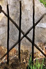 Runen in Holz geschnitzt