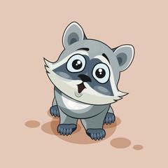 Raccoon cub surprised