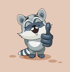 Raccoon cub thumb up